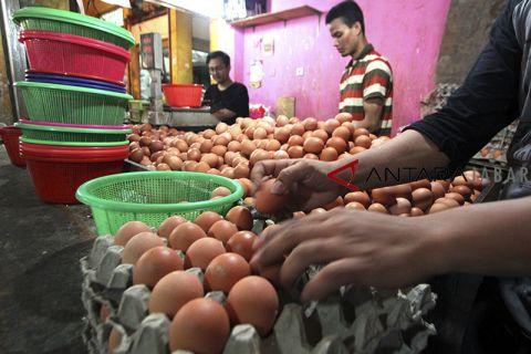 Harga telur ayam di Cianjur melambung