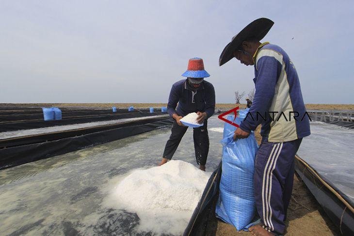 Rencana penghentian impor garam
