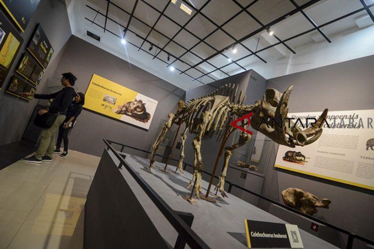 Koleksi baru museum Geologi