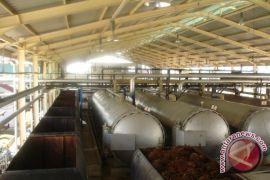 Kalbar Menuju Hilirisasi Industri