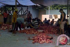 Korban gempa sembelih hewan di tempat pengungsian