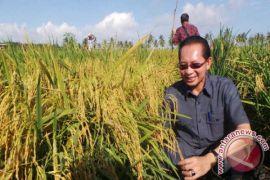 BI Lhokseumawe dorong penggunaan teknologi Hazton di petani