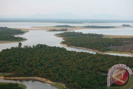 TNBKDS gandeng Warlami gali potensi pewarna alami di kawasan lindung