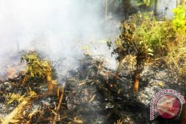 Warga diminta jaga lahan dari kebakaran