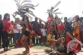 PD AMAN Singbebas perjuangkan hak masyarakat adat