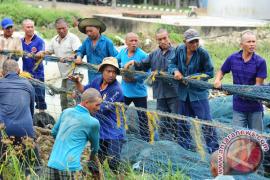 Tim Gabungan Tangkap 13 Kapal Nelayan Vietnam