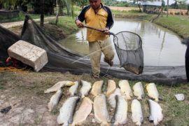 Singkawang dorong faskes urus perizinan pengolahan limbah