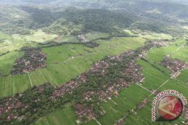Dinas Pertanian Singkawang Usulkan Lahan Pertanian Berkelanjutan