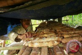 Legislator dorong potensi perkebunan Kapuas Hulu