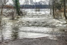 Hari ini diprediksi air pasang Sungai Kapuas tinggi
