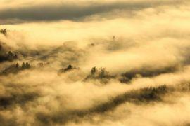 6.000 penumpang terlantar akibat kabut asap