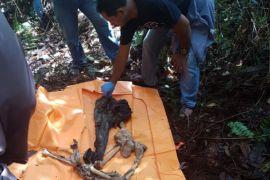 Pembunuh di Desa Sungai Enau ditangkap