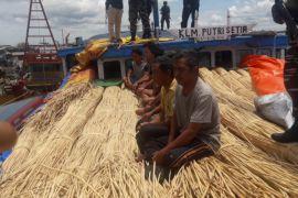 KRI Sembilang gagalkan penyeludupan ratusan ton rotan ke Malaysia