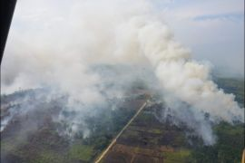 Polisi selidiki penyebab kebakaran lahan gambut di sepakat ujung