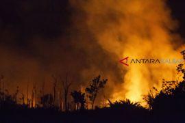 Pemkab Kubu Raya bentuk masyarakat peduli api