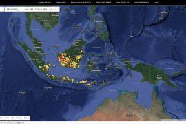 Terpantau sebanyak 272 titik api di Kalbar