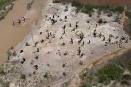 BI Kalbar tanam 1.000 pohon di eks tambang emas