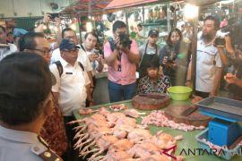 Harga ayam di Pontiank Rp30.600 per kilogram