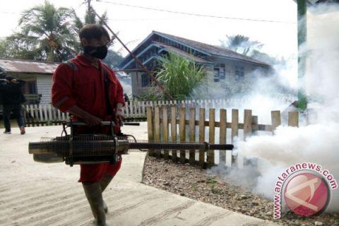 Dinkes Pontianak fokus berantas perkembangbiakan nyamuk aedes aegypti