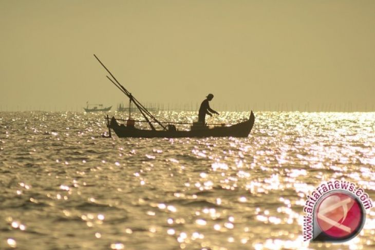Ekspor Ikan Kalbar Tingkatkan Kesejahteraan Nelayan