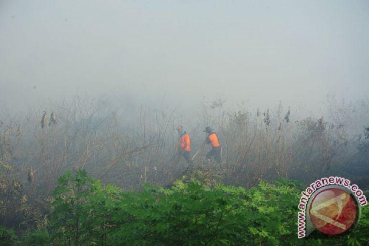 Kabup asap menjadi atensi utama Pemprov Kalbar