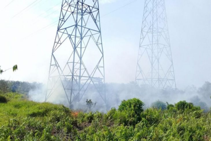 Jaringan trasmisi PLN terancam pembakaran lahan