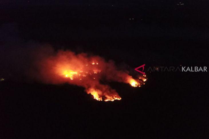 Foto Udara Kebakaran Hutan Ketapang