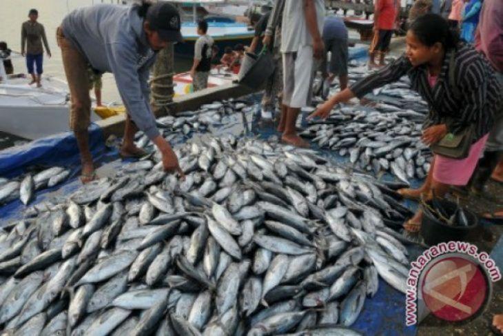 Pontianak butuh Rp6 miliar untuk renovasi pasar ikan