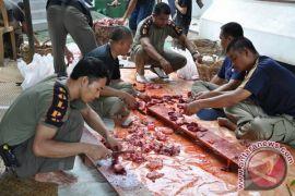 Kabupaten Balangan Kekurangan Stok Daging Sapi