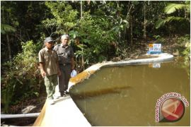 Pemkab Kotabaru Segera Bangun Embung Gunung Perak