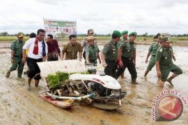 Agriculture Minister to Optimize Tidal Area of South Kalimantan