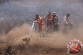 Kebakaran Lahan Di Martapura Berhasil Dipadamkan