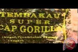 Polres Tanah Bumbu ringkus pemilki tembakau gorila