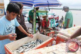 Kotabaru segera bangun pasar ikan modern