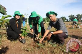 10 thousand plant seeds for Earth Day in Tabalong