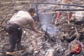 Polres HSS Amankan Dua Warga Pembakar Lahan