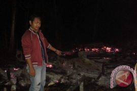 Three hectares APL in Kotabaru on fire