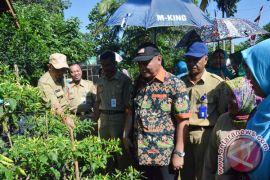 Kementan Dorong Hilirisasi Industri Perkebunan Di Kalsel