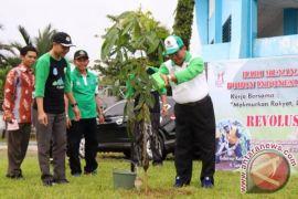 HSS Tanam Pohon Hijaukan Kota Kandangan