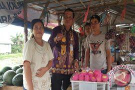 Gubernur Kalsel Ajak Warga Lestarikan Buah Lokal