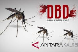 Kewaspadaan Penyakit DBD Jangan Mengendur