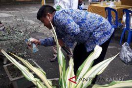 Pemanfaatan Limbah Air Kelapa