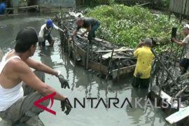 Masyarakat Kotabaru Bersihkan Sungai Antisipasi Banjir
