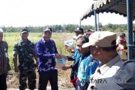 Panen jagung Balangan lampaui target nasional