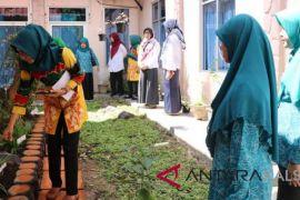 Desa Bamban Wakil HSS Lomba Asman Toga