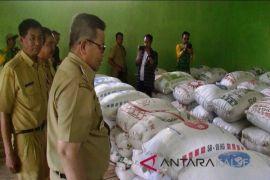 Kabupaten Balangan berusaha penuhi swasembada pangan