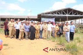 Kedutaan Australia kunjungi pembiakan sapi Tanah Laut
