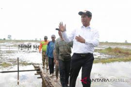 Pemprov Kalsel realisasikan pembukaan lahan 750 hektare