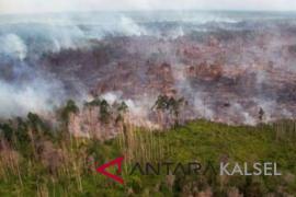 Luas lahan terkena Karhutla Kalsel 1.084 hektare