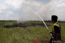 Kebakaran hutan dan lahan HSS belum berdampak kabut asap